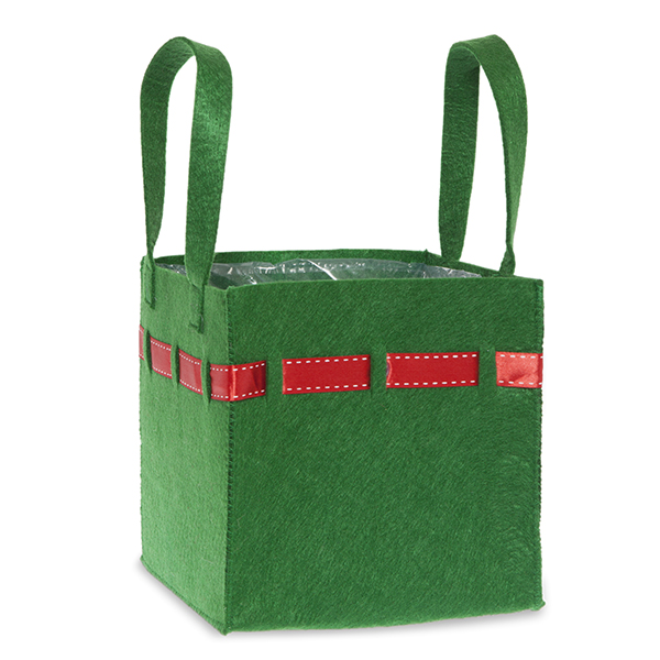 Green Square Felt Bag with Red Trim - Small 7in