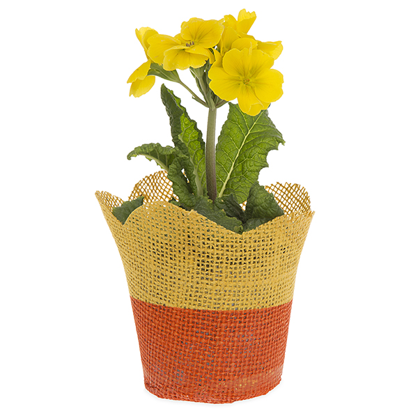 Jute Tulip Pot Holder Basket with Plastic Lining Sm 4in