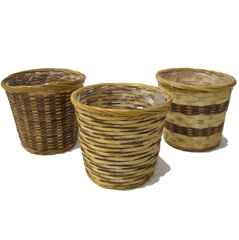 Fern Bamboo Round Planter - Assorted 7in