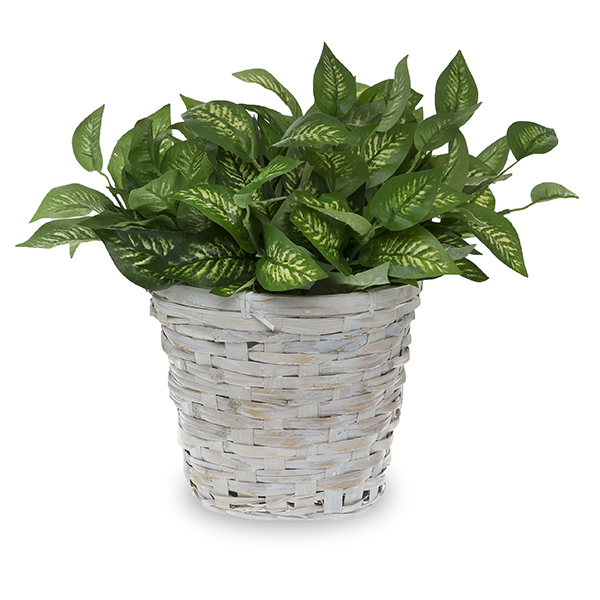 Round White Bamboo Planter with Liner 7in