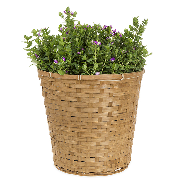 Round Split Bamboo Planter Basket with Liner - Light Brown 13in