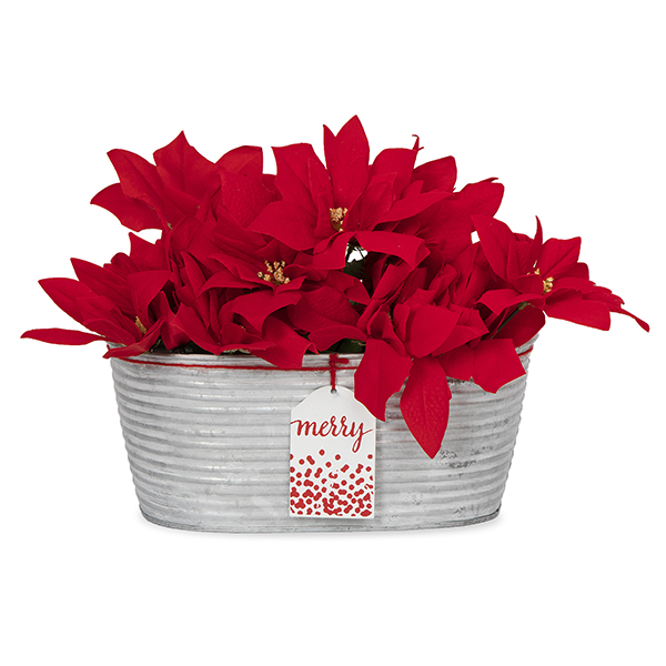 Oblong Galvanized Ridge Container with Holiday Tag - Merry 10in