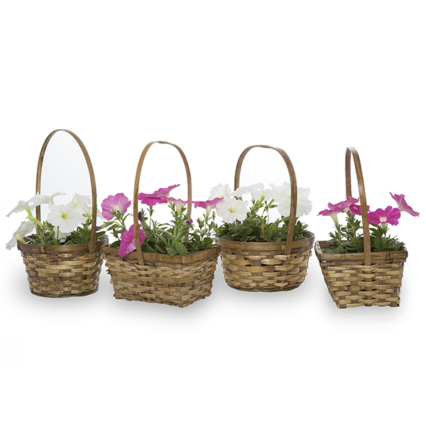 Stained Bamboo Handle Baskets Assorted - Set of 4